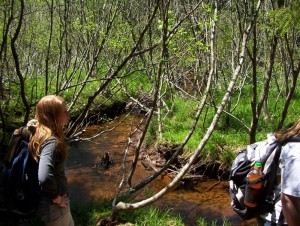 Sharon Farrell (Miawpukek First Nation), Mi'kmaw archaeologist, enjoys one of the streams along the Mi'kmawey Debert Interpretive Trail.