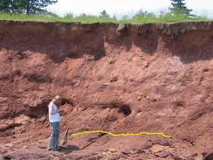 Sharon Farrell, MDCC Curatorial Assistant, takes notes in front of a large glacial till deposit during one of several geological projects the MDCC has undertaken with geologist Dr. Ralph Stea and soil scientist Dr. Gordon Brewster. The yellow line marks the boundary between till and bedrock.